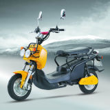 Electric Scooter (XFS-ZM)