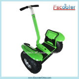 2015 Hot 2 Wheels Electric Scooter Standing up Electric Scooter