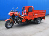 Quality Three Wheeled Truck with Big Shock Absorber and Strong Cargo Box