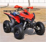 250cc Quad with Exclusive Design Manual Racing Sports ATV (MDL GA017-6)