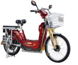 Economic Electric Bicycle