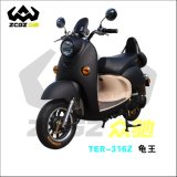 Zhongchi Hot Sale 800W 60V20ah High Power E Electric Motorcycle (TDR-316Z)