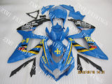 Motorcycle Fairing for Suzuki (GSX-R600RR 08-10)
