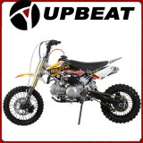 Upbeat Kids Mini Dirt Bike