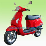 EEC Gas Scooter Maple 50 (MAPLE 50)
