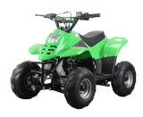Thunder Cat 110cc Quad Bike Kids ATV with Electric Start and Automatic
