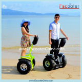 Golf Mobility Vehicle Standing Handle Electric Scooter for Beach