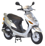 50CC Little Fish-I Gas Scooter (DG-GS603)