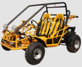 Water-Cooled, Double-Seat, Go Cart with EEC (ST650)