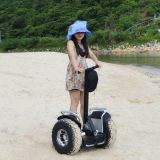 Estway Offroad Self Balancing Electric Scooter Electric Balance Scooter Standing