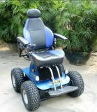 Disabled Electric Wheelchair's