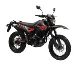 250cc EEC Suzuki Racing Dirt Bike (HDD250GY)