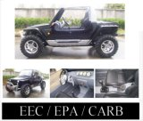 NEW 2009 GO KART-BUGGY 800CC EPA/CARB/EEC APPROVED