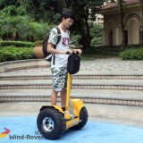 2 Wheel Electric Standing Motor Scooter