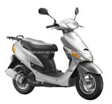 Professional Supplier of Popular Scooter (SP50QT-1)