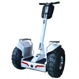Smart Balance Scooter, Two Wheels Stand Scooter, Electric Chariot Scooter