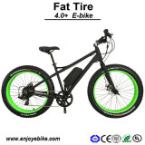 4.0+ Snow Bike Fat Tire Electric Mobility Scooter (PE-TDE12Z)