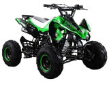 High Quality 110cc/125cc ATV/Quad Bike (8inch off road wheel)