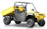 1000CC Two Seats Efi Engine UTV (TT-UTV1000-A)