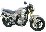 300CC Racing Motorcycle (FPM300E-B)