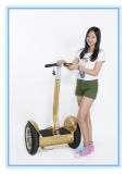 Super Bargain 2 Wheels Self-Balancing Electric Smart Scooter, Personal Standing Electric Chariot From China. City-Road Stanard