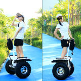 2 Wheel Adult Electric Scooter