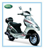 50cc/49cc Scooter, Gas Scooter, Moped Scooter, Motor Scooter (Little Eagle)