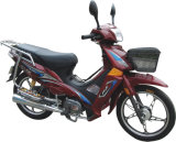 Motorcycle (GW110-13)