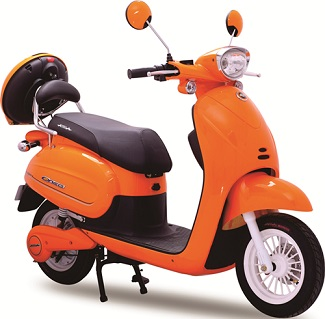 Electric Scooter Standard Features and Specifications
